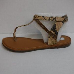 Steve Madden Size 8.5 Brown Sandals New Womens